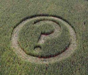 crop_circle18