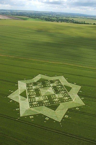 21-East-Field,-Wiltshire-03-07-05-Wheat-L